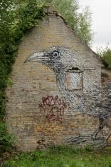 Raven by Roa