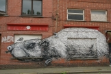Rat by Roa